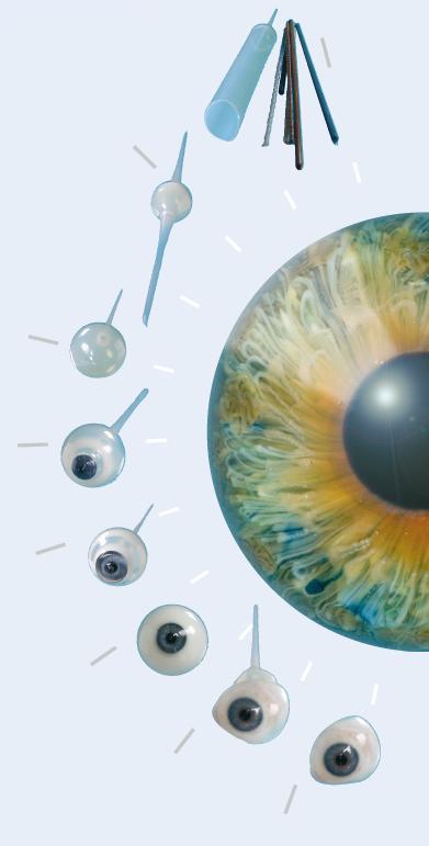 Entstehungsprozess künstliches Auge
